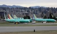 阿根廷宣布禁?#20849;?#38899;737 Max系列客机在领空执飞