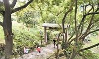 广州要创建17个森林小镇
