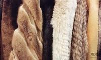 挪威承诺将禁止毛皮养殖场运营