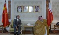 新任驻巴林大使安瓦尔向巴外交大臣递交国书副本