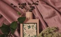 如果气味有画面   Gucci邀请15位艺术家画出香气的模样