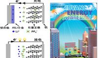 深圳先进院发表新型双离子电池综述