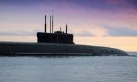 俄高官:俄海军今年将获得约40艘新型舰艇