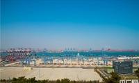 青岛全自动化港集装箱码头吊装效率世界第一