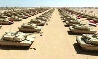 埃及军队为何反恐乏力?法智库一言戳中病根