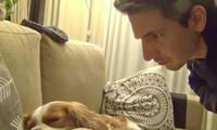 主人回家听见狗狗打呼噜,偷偷将它拍下来,狗狗看见视频后愣住了