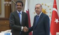 卡塔尔宣布对土直接投资150亿美元