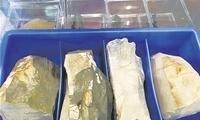 中国科学家公布重大考古成果 4万年前人类已登上青藏高原