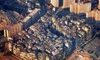 香港人口密度最高的地方,192万多人每平方公里