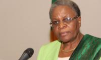 纳米比亚否决非盟关于授予以色列观察国身份的动议